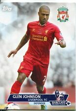 Premier calcio in oro 13/14 Carte Di Base #41 Glen Johnson