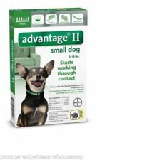 Bayer Advantage II for Small Dogs 3-10 lbs - 6 Pack - FREE Shipping!