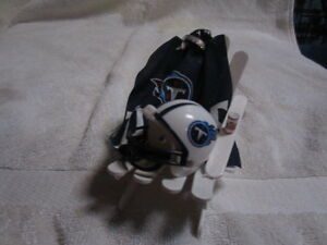 NFL AFC - SOUTH: COLTS, JAX, TENNESSEE, HOUSTONS Chair Cake Topper/Ornament