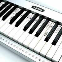 NEW Electronic Piano Keyboard Music Note Stickers Decal Label Both Keys