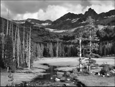 Mt. Ansel Adams Lyell Fork by Ansel Adams