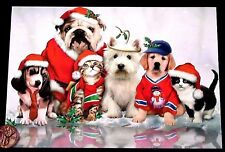Puppy Dogs Kittens Cats Ice Santa Hats Holly Snow - Christmas Greeting Card NEW