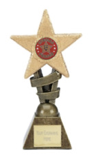 Special Person School Glitter Star Sports Trophy Award ENGRAVED FREE