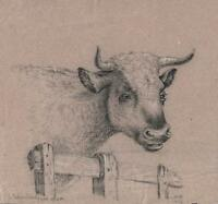 SUPERB OLD MASTER COW PORTRAIT Chalk Drawing 1814 SIGNED MH