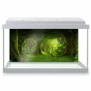 Fish Tank Background 90x45cm - Beautiful Ancient Forest Woods History  #8294