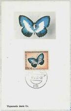 Dutch New Guinea