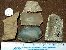 5 assorted Agate, Jasper, Onyx  mixed slabs  6.2 oz