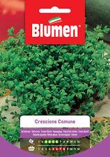 Blumen Semi di Crescione Comune Semi Sementi da Piantare - 1 cfz