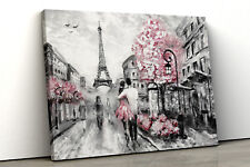 Pink black and white Paris Oil Painting Lounge Framed Canvas Print Wall Art pp89
