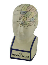 Zeckos Phrenology Head With Colored Map Ceramic Coin Bank