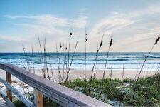 canvas wall art large print photo coast tropical beach sea waves blue sky grass