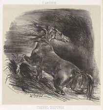 Delacroix Reproduction: Wild Horse (Cheval sauvage): Fine Art Print