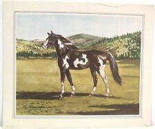 Vintage c1949 Horse Prints by Jeanne Mellin ~ Set of Four  ~ The Wild Stallion