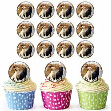 Labradors 24 Personalised Pre-Cut Edible Birthday Cupcake Toppers Decorations