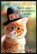 Thanksgiving Orange Kitten Cat Pilgrim Hat - Large Thanksgiving Greeting Card