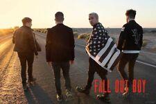 Fall Out Boy- Desert Walk Poster Print, 36x24