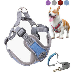 Luminous Adjustable Harness for Dogs Puppy Vest Collar Leash Pets  Accessories