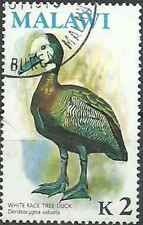 Timbre Oiseaux Canards Malawi 240 o (30141) - cote : 17 €