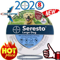 Bayer Seresto Flea and Tick Collar for Large Dog,8 Month Protection Treatment US