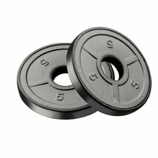 """Weight Plates Set Of Two 5 Iron Standard 1"""" Grip Plates Weights"""