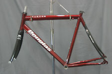 Douglas Fusion Bike Frame Race Triathalon 60cm XL NEW Reynolds USA Made Charity!