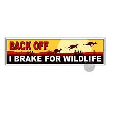 back off I brake for wildlife Australian kangaroo tailgating bumpersticker 200mm