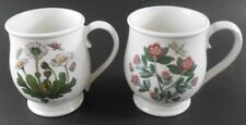 Portmeirion Botanic Garden 2 Large Coffee Cup Mug Set Daisy & Rhododendron
