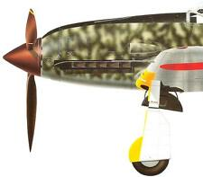 IJAAF KAWASAKI Ki-64 HIEN TONY Ki-100 GOSHIKISEN Fighters Vintage Model Art 428