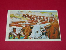N°254 LES HEREFORDS CONQUETE DE L'OUEST WILLIAMS 1972 PANINI FAR WEST WESTERN