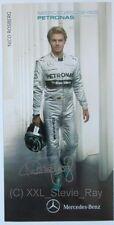 Nico Rosberg - Racing Card Photo Mercedes Formula 1 F1 *CHAMPION*