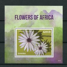 Ghana 2016 MNH Flowers of Africa Cape Daisy 1v S/S Flora Stamps
