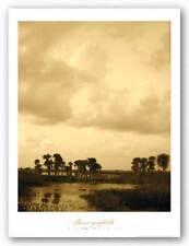 Viera Dusk II Rene Griffith Art Print 30x24