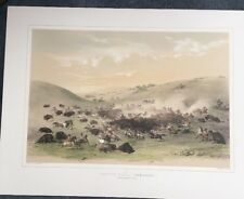 Buffalo Hunt,Surround,George Catlin,Native American Orig Lithograph,Hand colored