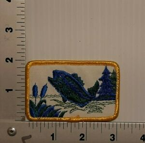 1980's BASS FISHING VINTAGE EMBROIDERED PATCH