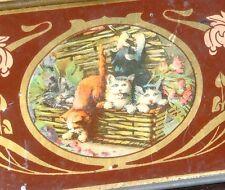 boite tôle lithographiée décor chats chatons B Sirven imprimeur éditeur Toulouse