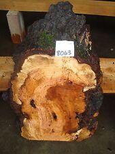 "# 8063 cherry burl live edge slab wood lumber rustic 21""L 14 1/2"" W 2 1/2"" T"
