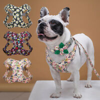 Floral Dog Harness & Collar & Lead Set Small Large Padded Walking Vest Bulldog