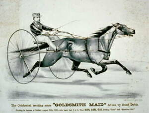 Harness Racing,Horse Racing,Celebrated Trotting Mare,Goldsmith Maid,c1871 1677