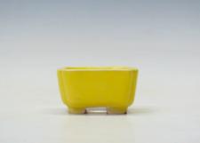 "NEW Genuine Japanese Bonsai pot ""Shibakatsu"" from Tokoname 57*57*H30mm #Sb28"