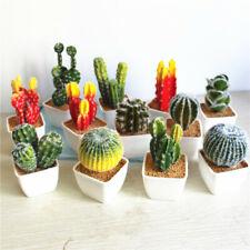 Simulación Artificial suculentas verdadero toque cactus del desierto con Jarrón Blanco Bonsai