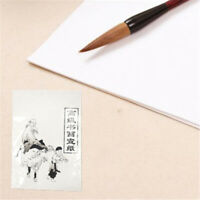 30pcs of Chinese Calligraphy Brush Ink Writing Sumi Paper/Xuan Paper/Rice Paper