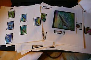 124 Tanzania (Africa) postage stamps, many full sets- philately kiloware postal