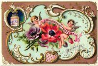 LIEBIG 475 c1896  set 475, langue Bohemien, 6 litho cards FLOWER ART Excelent