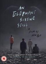 Elefant stillsitzen NEU DVD
