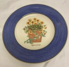 Wedgwood Sarah's Garden Tagetes Patula Queen's Ware England Salad Plate 8.25 NWT