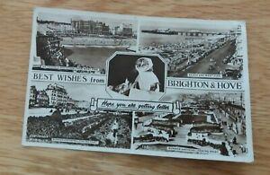 Vintage  1950`s  Wardells  Real  Photograph Postcard  Brighton  &  Hove