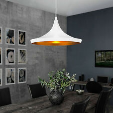 Modern Home Ceiling Lamp Hanging Light Pendant Chandelier Fixture Dining Room