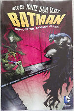 Batman: Through The Looking Glass - Graphic Novel