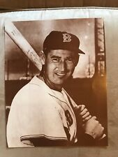 TED WILLIAMS RETRO SIGN BOSTON RED SOX 14x11