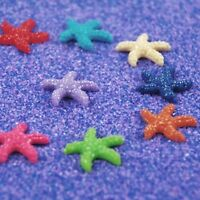 20pcs Tiny Resin Starfish Decorations Colorful DIY Decor For Micro Landscape